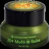 20+ Multi Balm (净重20克)